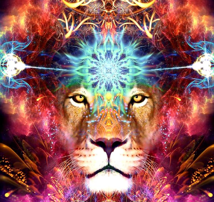 Guided Meditation To Go To The Next Level With Lion Gate Portal