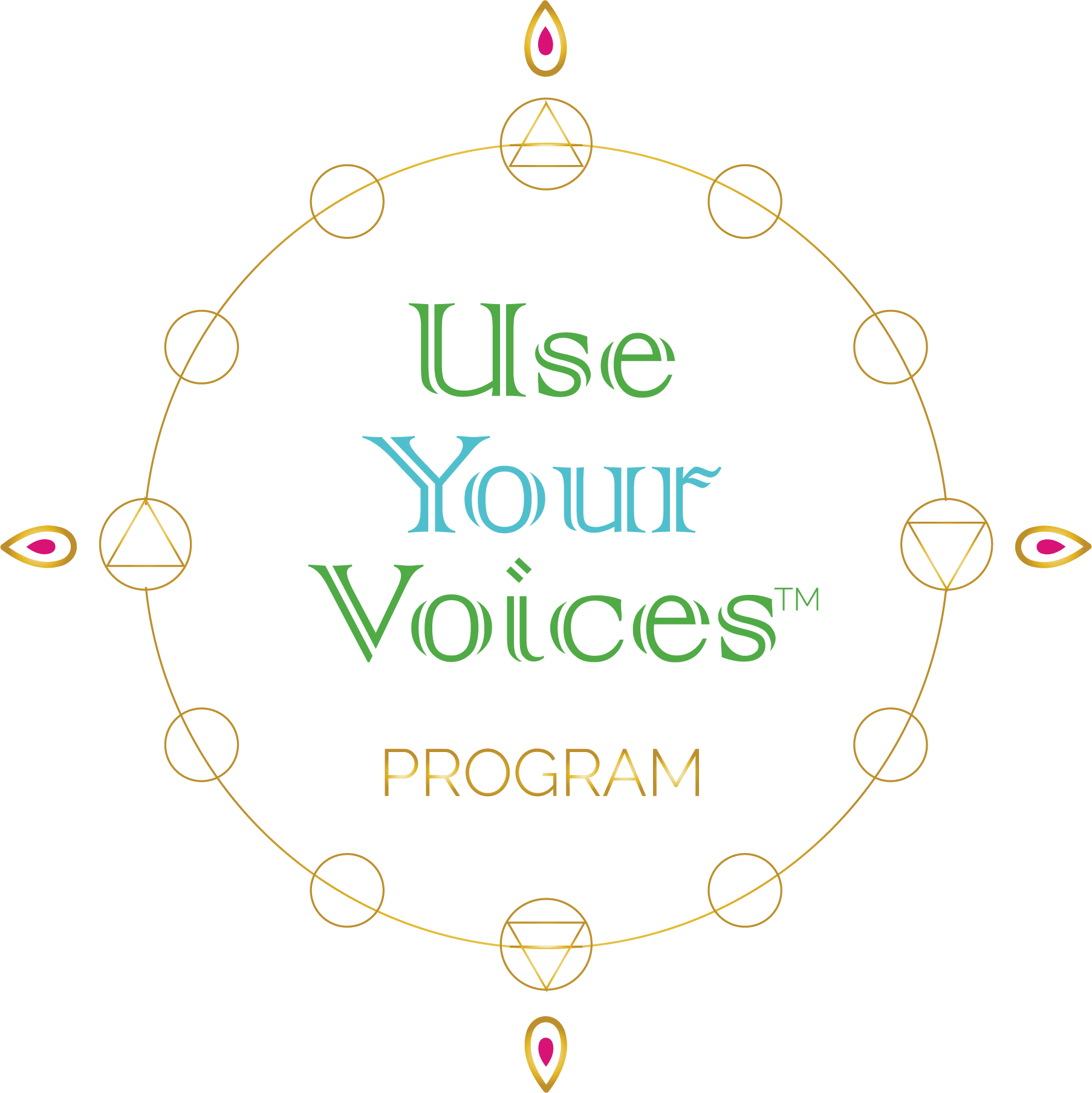 Use Your Voices Program